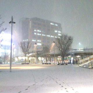 選挙戦最終日に山口代表と街頭に立った岐阜駅前。今夜は、雪景色