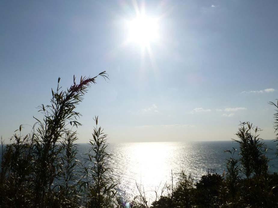 鳥羽市菅島の灯台付近から外洋を眺めた一枚。本当に綺麗な景色が満載です