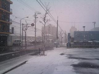 名古屋はかなり雪が降ってきました
