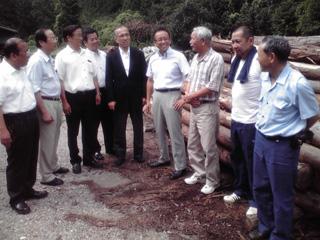 東三河地域の林業および製材業の実態調査を実施