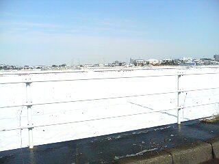 今年初の積雪で、辺りは一面の銀世界